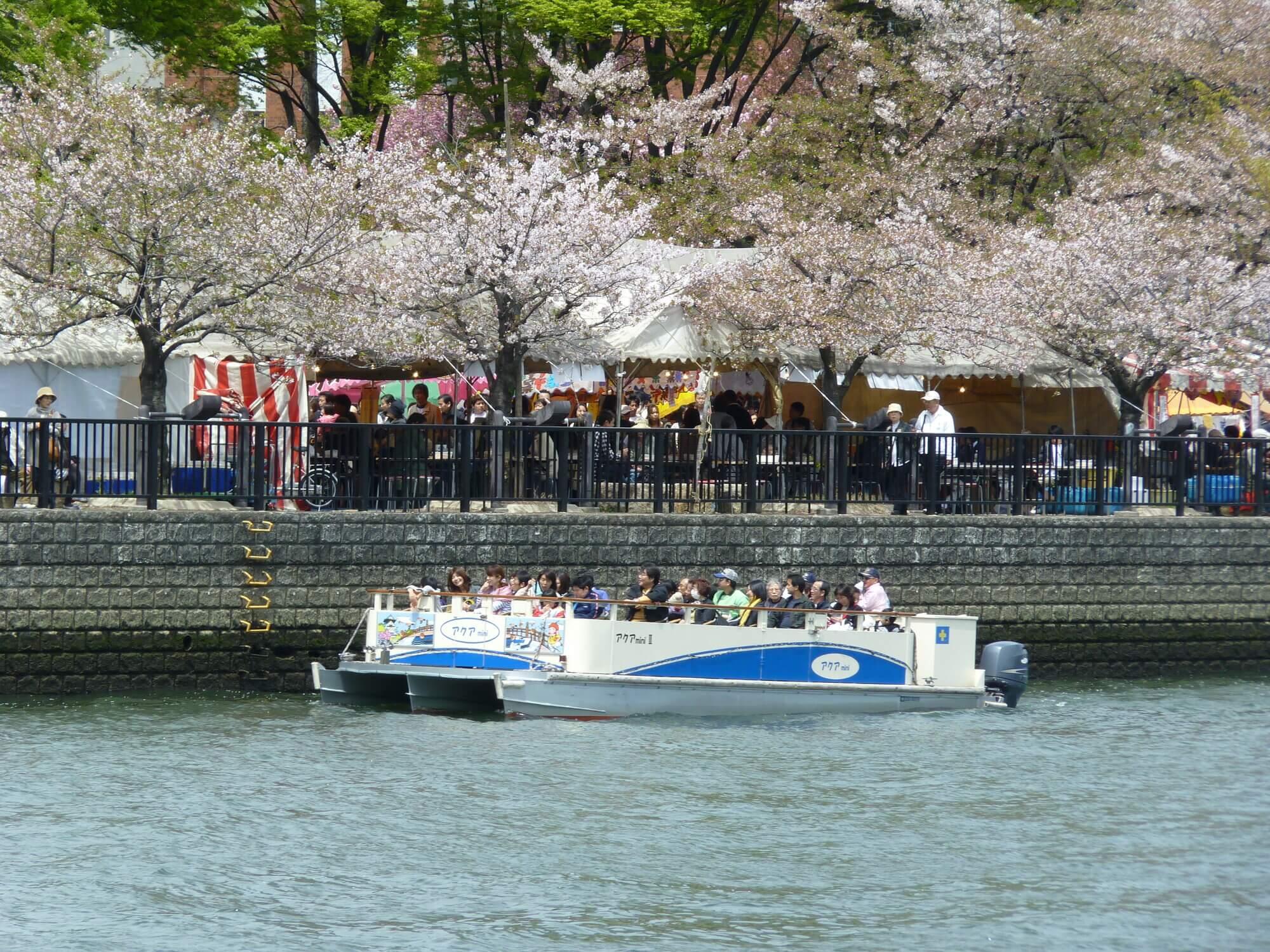 11社が参加する大阪シティクルーズ推進協議会が運営する「大川さくらクルーズ」。みんなで一丸となって、大阪の水上観光を盛り上げようとしています。(画像は昨年のものです)