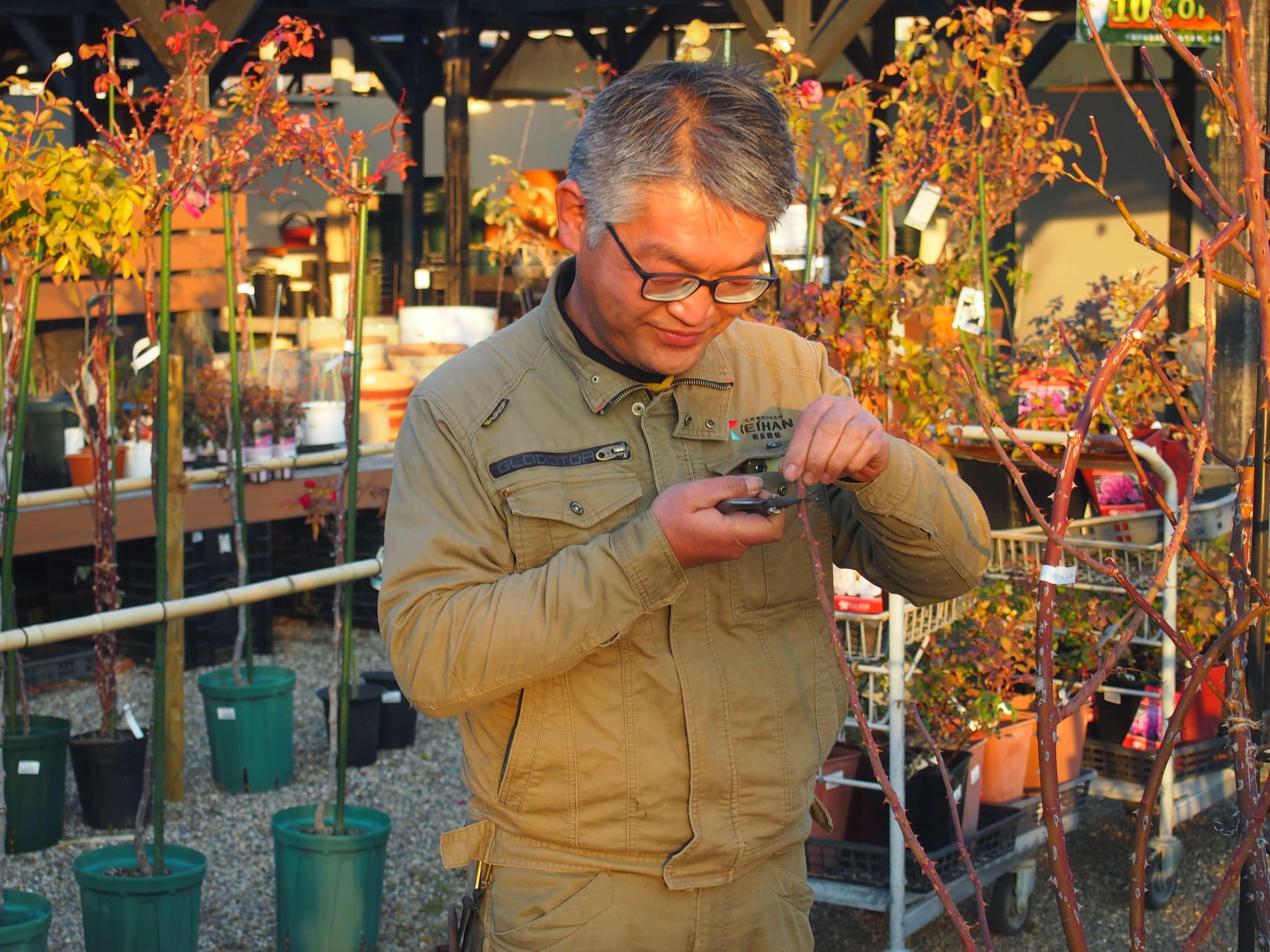 バラに話しかけるように接している小山内さん。「まさに子育てに似ています」とのこと。中之島でも、たくさんのバラとお話をされているのかも(京阪園芸ガーデンズにて)。